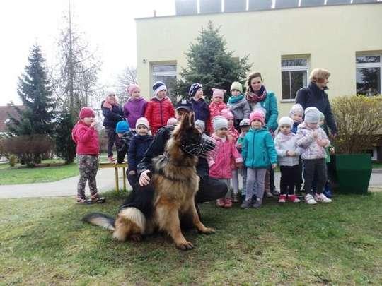 Pies policjant w przedszkolu